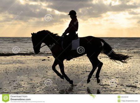 LADY HORSE UNA GIORNATA NELLA NATURA DEL CENTRO IPPICO TOSCANO